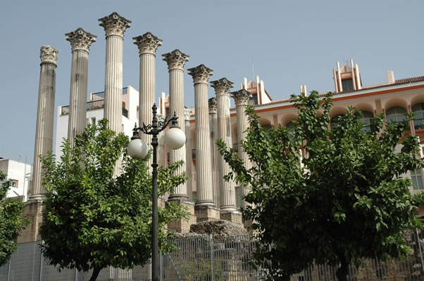 Columns of the Roman Temple dedicated to the Imperial Cult of Augustus Caesar